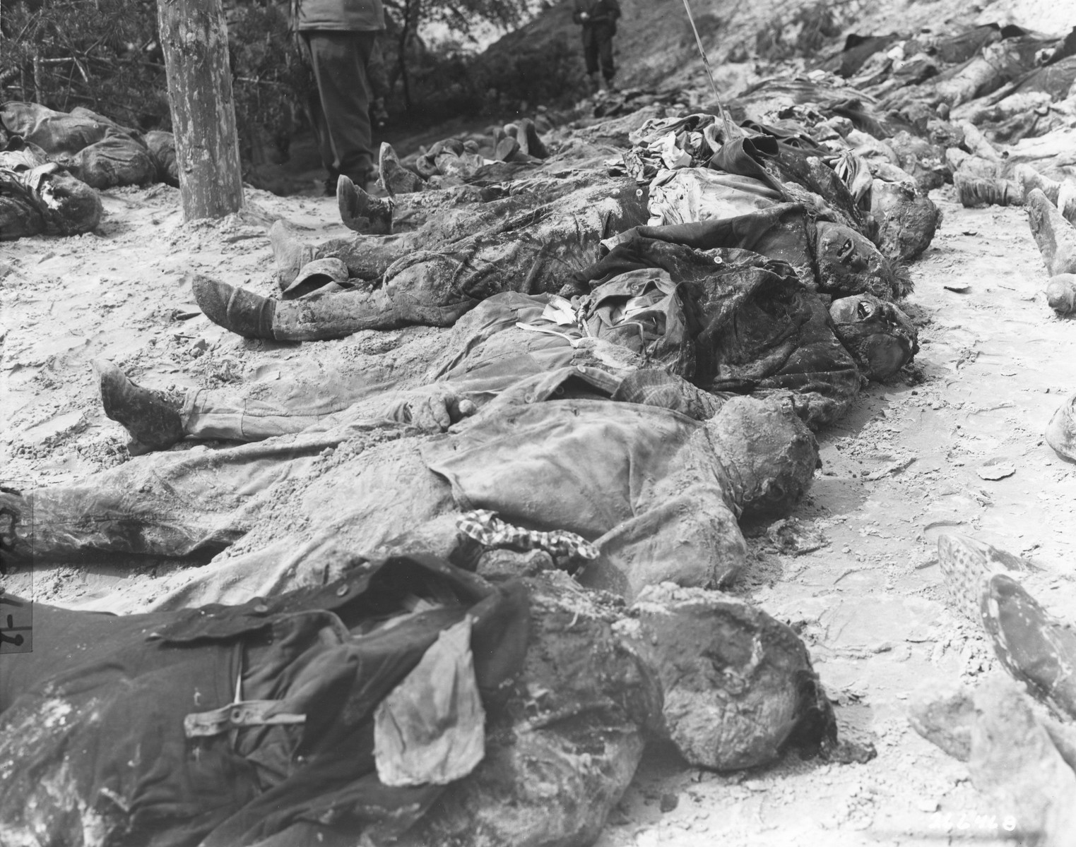 "The bodies of political prisoners exhumed from a mass grave on Wenzelnberg near Solingen-Ohligs.  The victims, most of whom were taken from Luettringhausen prison, were shot and buried by the Gestapo following orders to eliminate all Reich enemies just before the end of the war.  The original caption reads ""Bodies of German political prisoners who were shot by Nazis and thrown into a common grave.  Bodies were exhumed by German civilians by order of troops of the 94th Division, and will be given decent reburial in Ohligs in a public place as a permanent reminder to the German people of the atrocities committed by their Nazi leaders."""