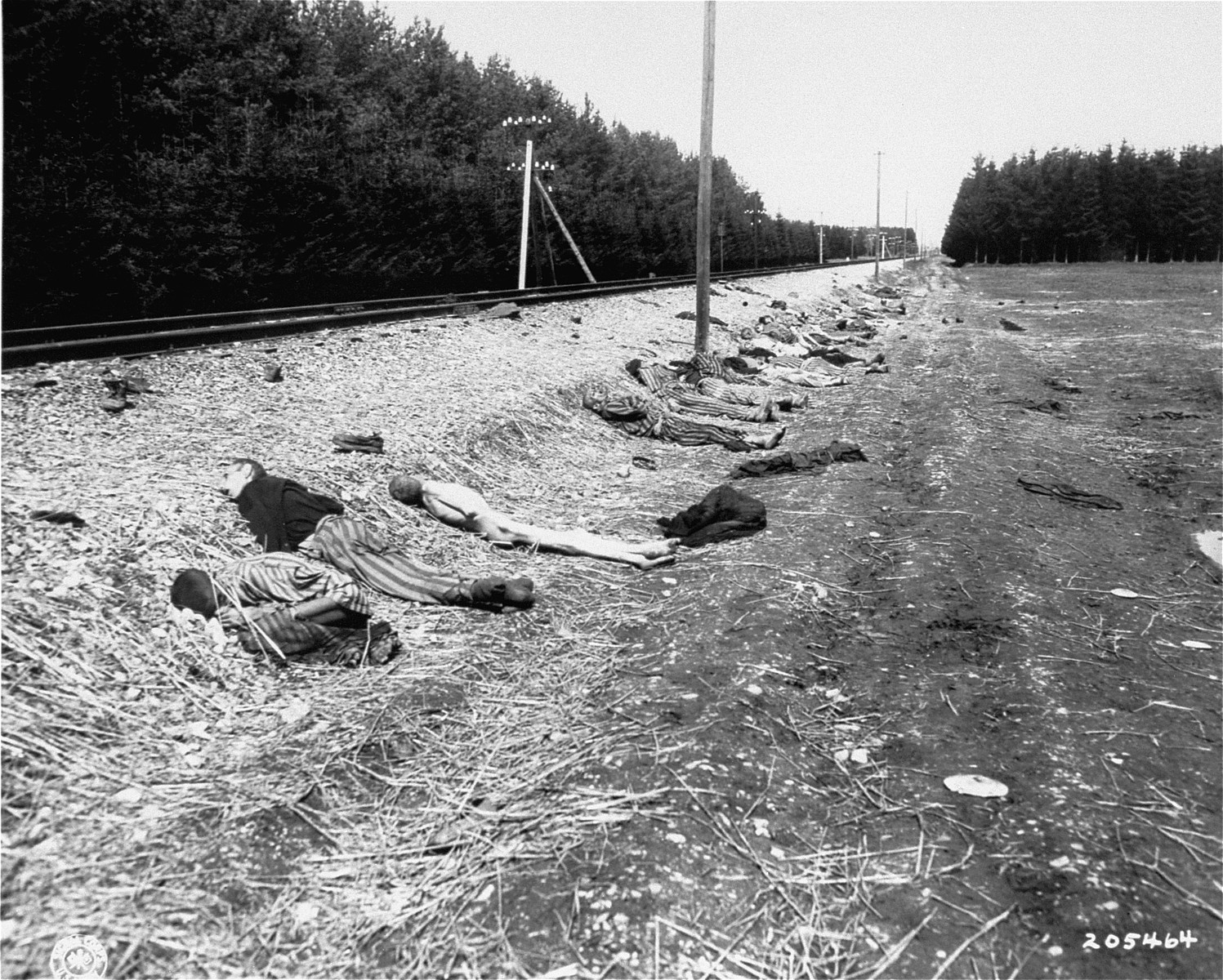 Corpses lie beside the rail spur that served the Kaufering IV concentration camp.