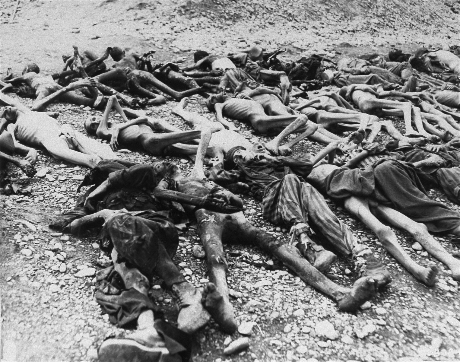 View of corpses lying in a row in Kaufering IV.