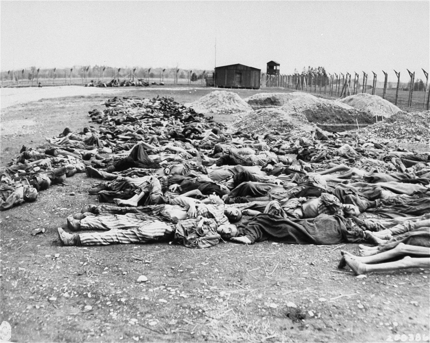 The bodies of Jewish prisoners who were killed at the Hurlach concentration camp, lie outside in rows near freshly dug mass graves alongside the barbed wire fence.