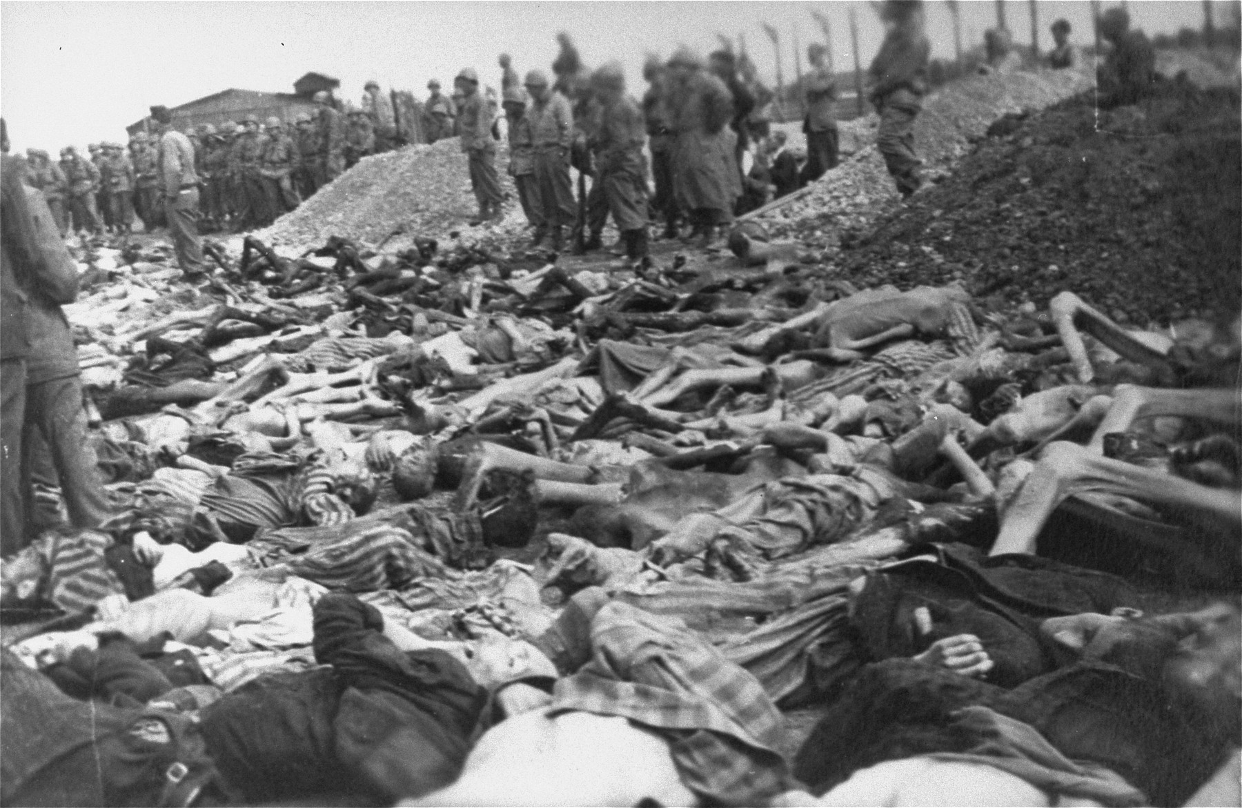 American troops look at rows of corpses in the Kaufering IV concentration camp, while Germans conscripted from the surrounding area dig mass graves.