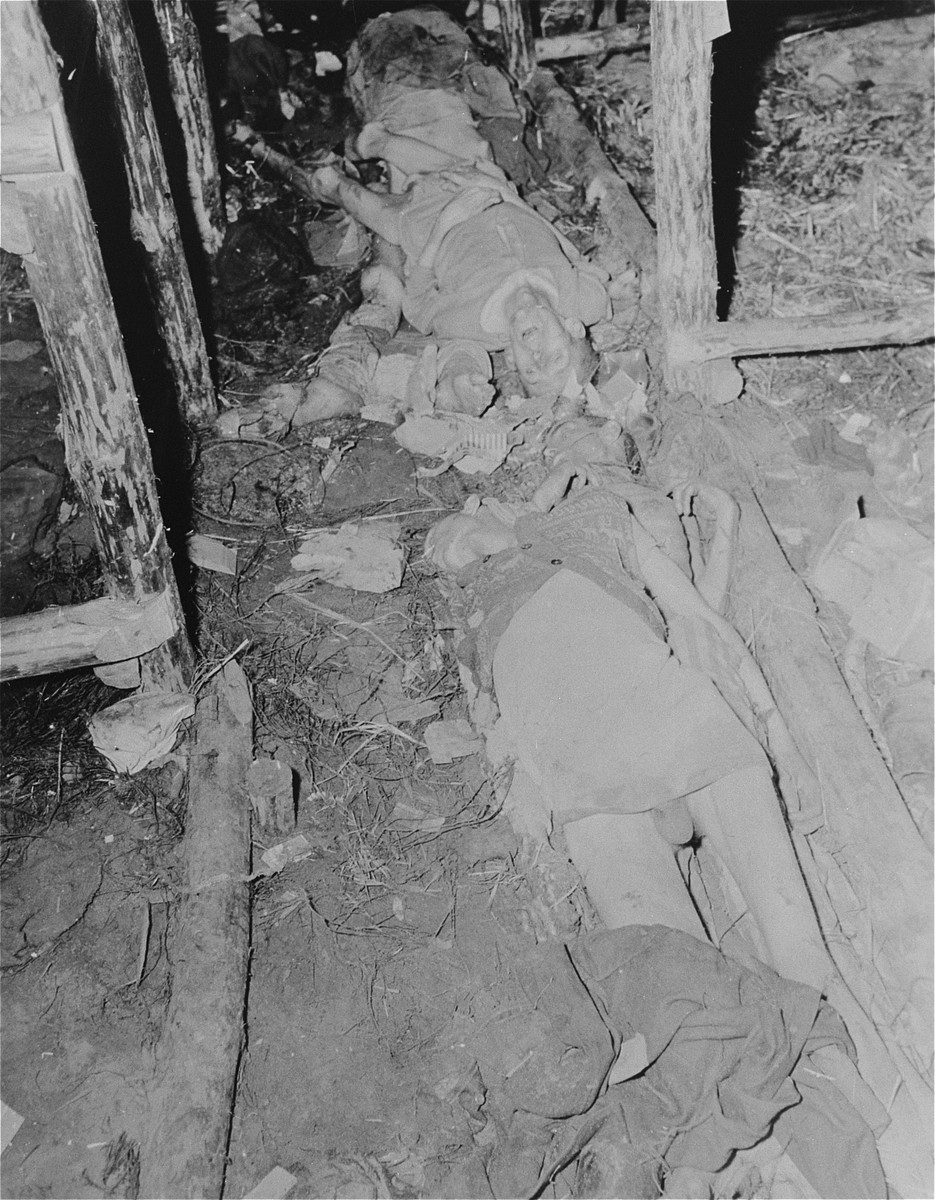 The bodies of former prisoners lie on the floor of a barracks in the newly liberated Woebbelin concentration camp.