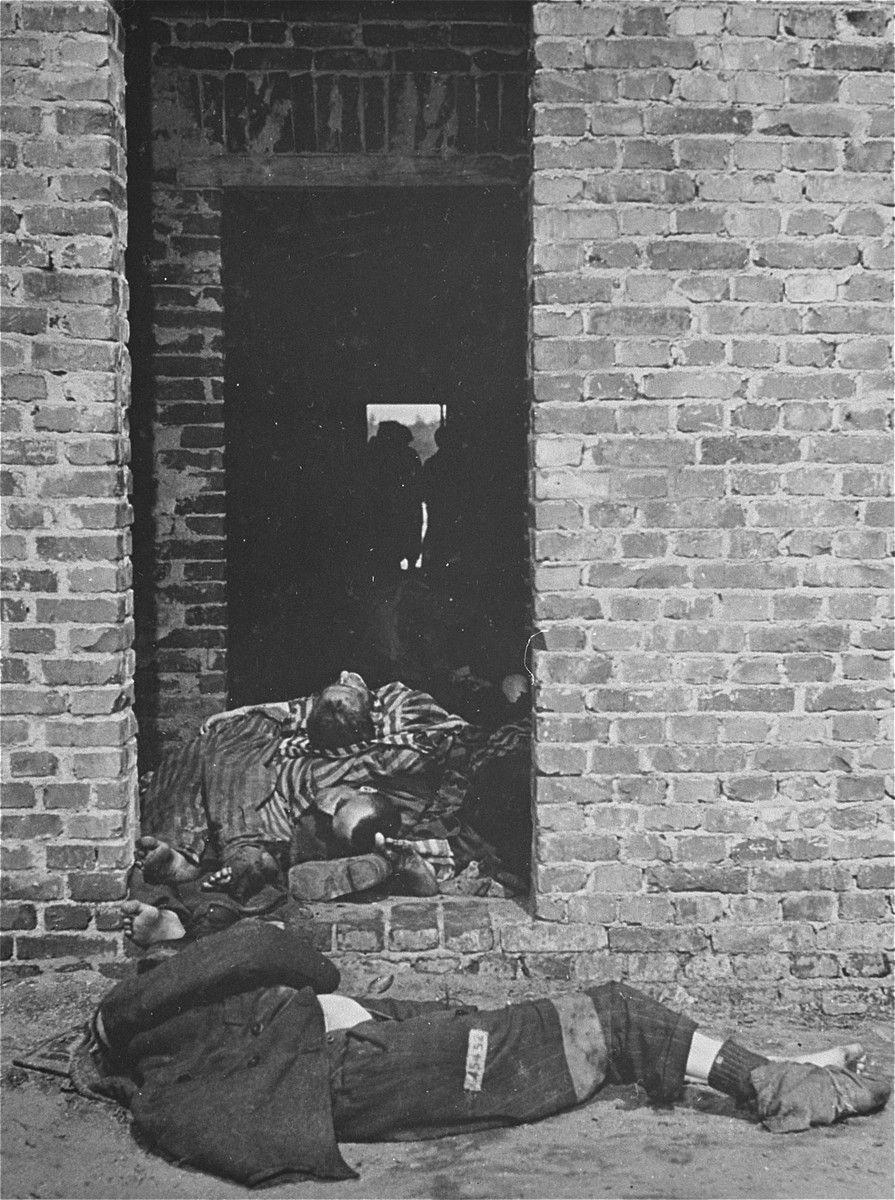 Prisoners' corpses in the doorway of a barracks in the Woebbelin concentration camp.