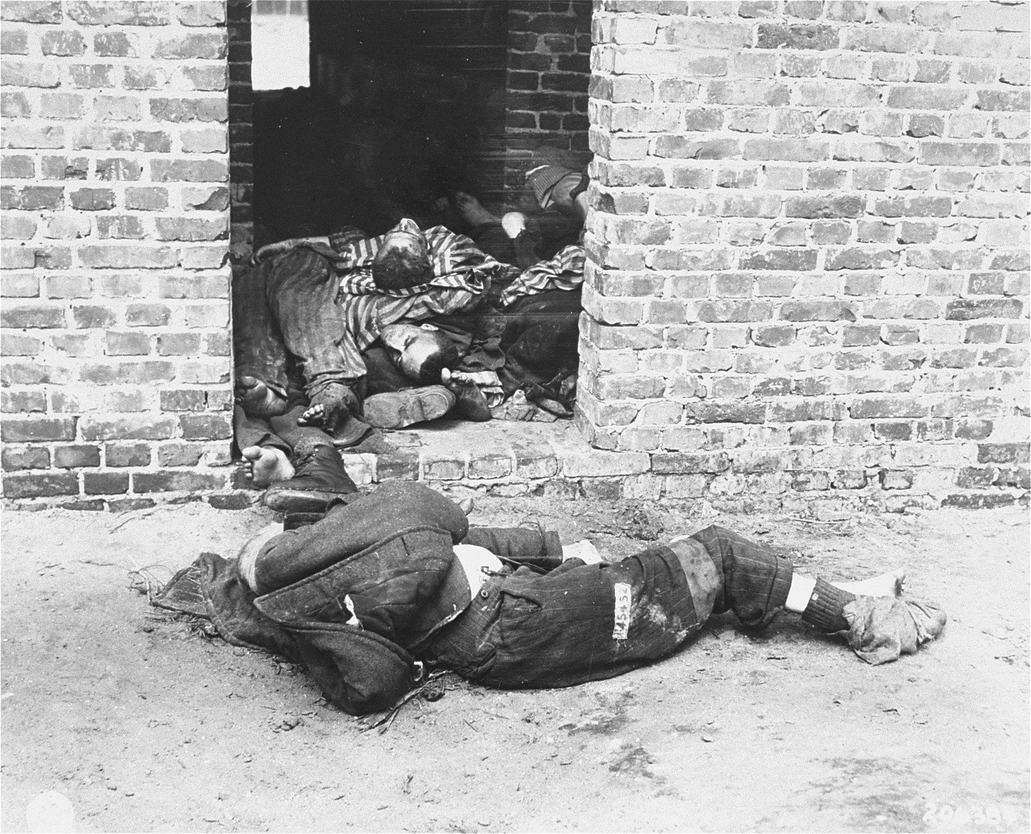 Corpses in the Woebbelin concentration camp.