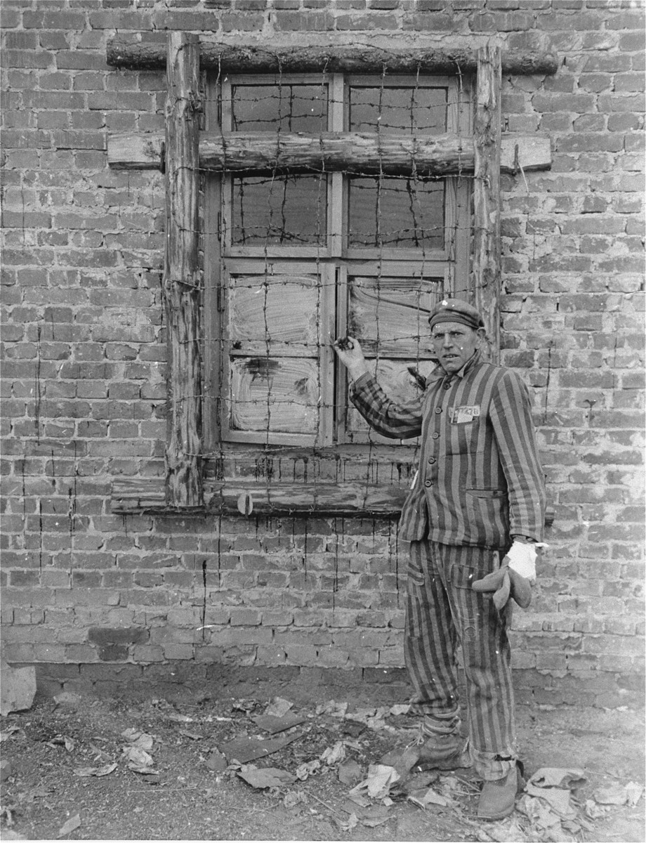 A Dutch survivor liberated in the Woebbelin concentration camp shows the photographer barbed-wire that was placed around barracks' windows to prevent escapes.