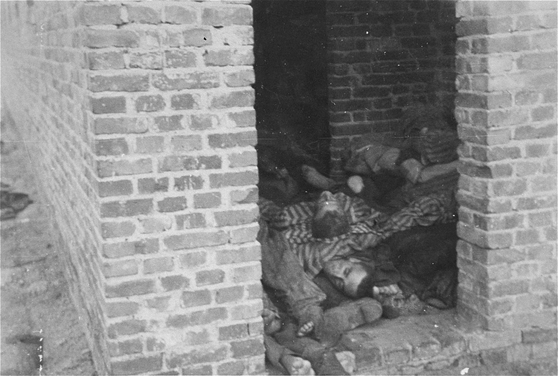 The bodies of prisoners are piled on top of one another in the doorway of a barracks in Woebbelin.
