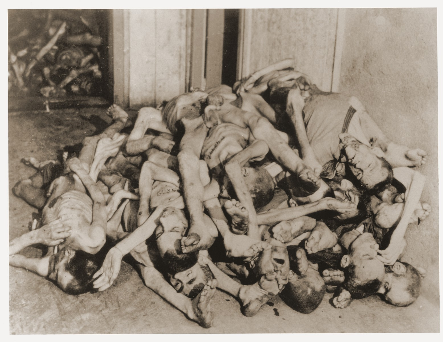 A pile of corpses lies in the morgue of the crematorium in the newly liberated Dachau concentration camp.
