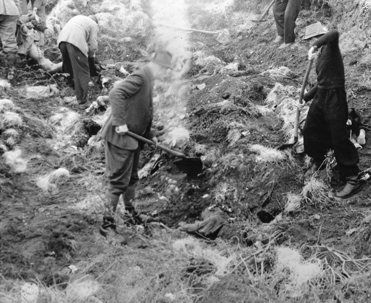 German civilians from Schwarzenfeld exhume the bodies of 140 Hungarian, Russian, and Polish Jews from a mass grave near the town.    The victims died while on an evacuation transport from the Flossenbuerg concentration camp.