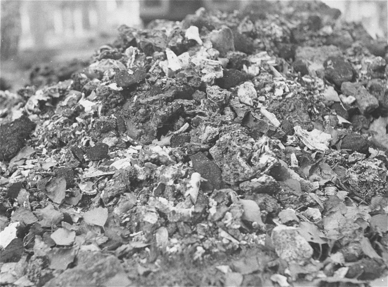 A pile of human remains and bones found near an incinerator in Vught by the Allies.