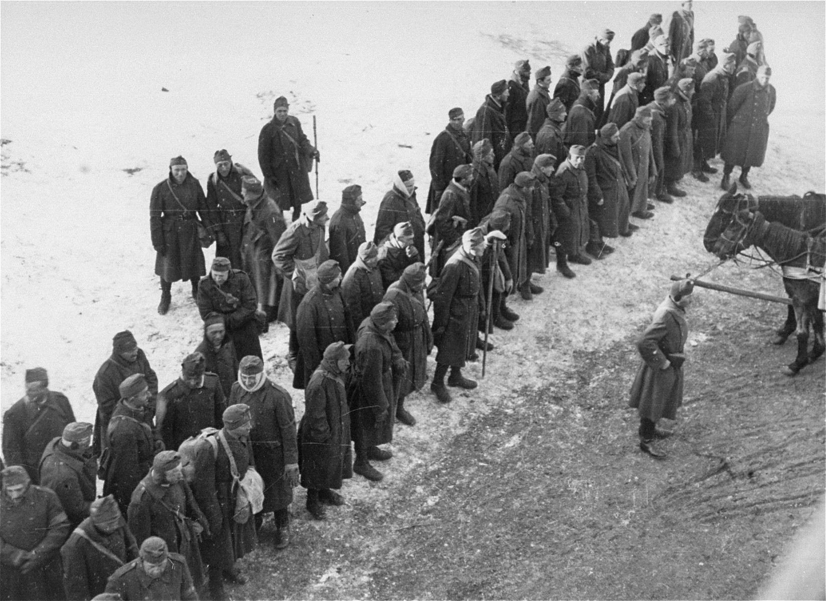 Hungarian-Jewish conscripts in the Hungarian Labor Service assembled for their journey back to Ungvar, Hungary.