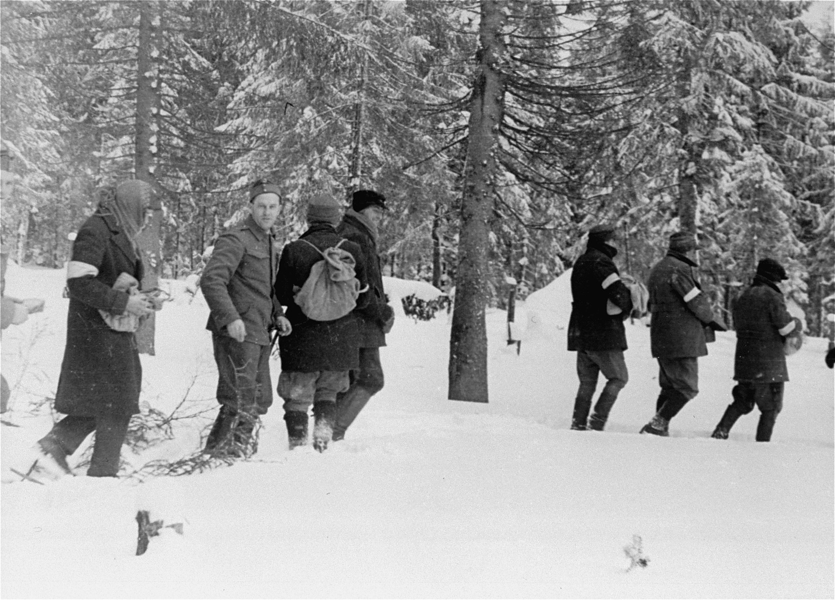 Jewish conscripts in Company 108/57 of the Hungarian Labor Service on a wood collecting expedition.