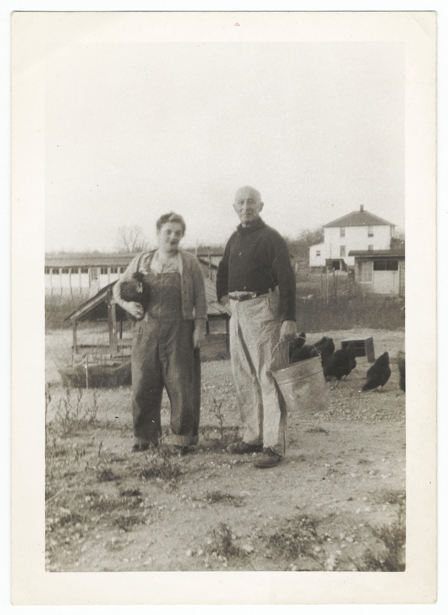 A German-Jewish refugee couple work on their chicken farm in Vineland, NJ.  Pictured are Rosa and Louis Brelauer.