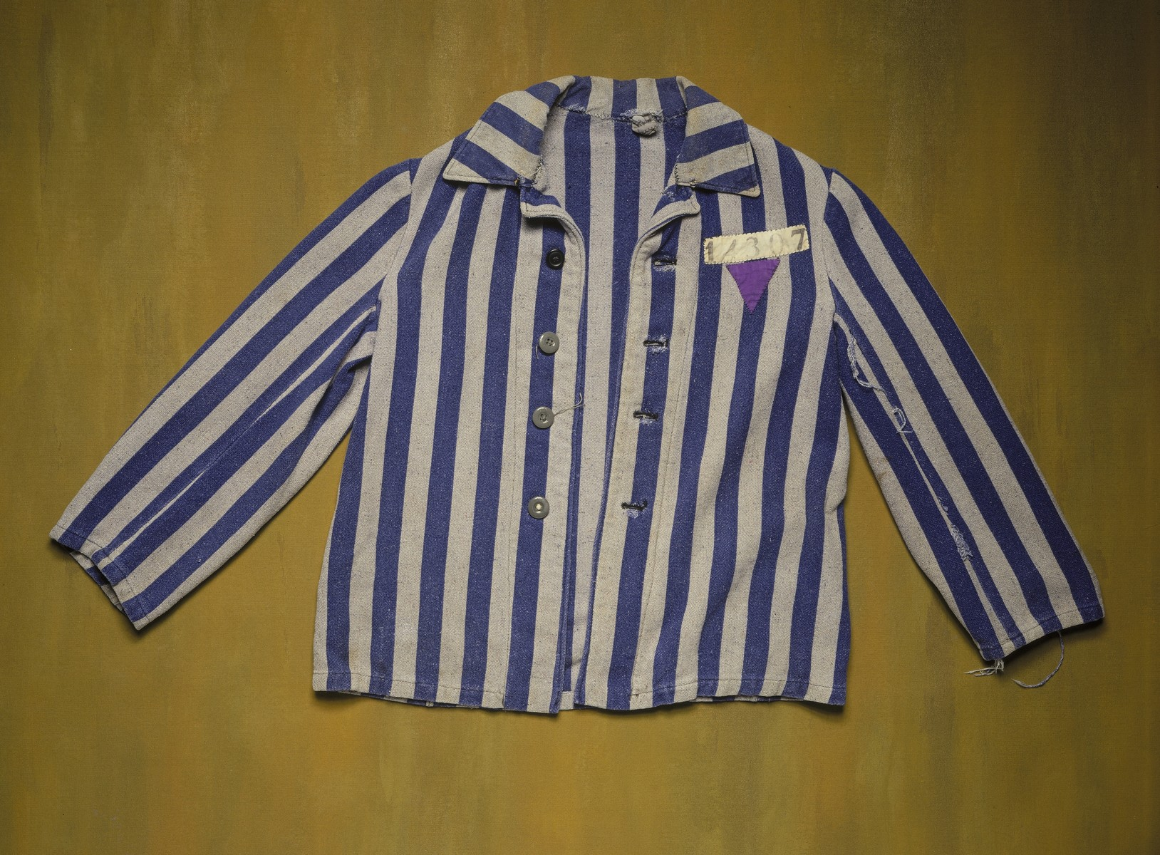 Striped prison jacket with an inverted purple triangle badge worn by Matthaeus Pibal, a Jehovah's Witness, during his imprisonment at the Dachau concentration camp.  The purple triangle badge was used to identify the prisoner as a Jehovah's Witness.