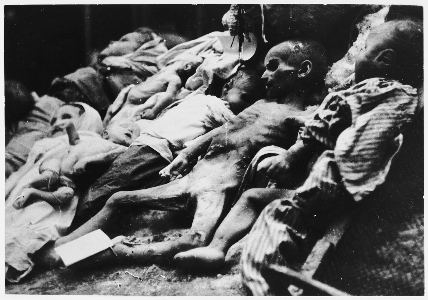 The bodies of emaciated children lying on the ground at an unidentified concentration camp for children in Croatia.