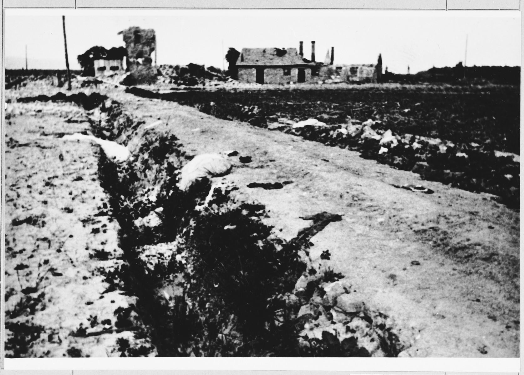 Clothing is strewn along the road leading to one of the Jasenovac concentration camps.    On April 21, 1945 a group of female prisoners were taken out on this road.  Knowing that they were to be killed, the women threw off their clothing.