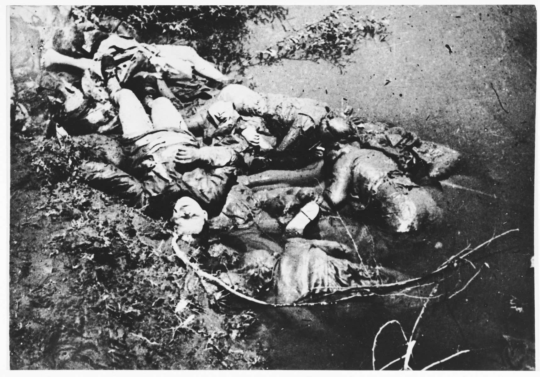 Bodies pulled out from the Sava River near the Stara Gradiska concentration camp.