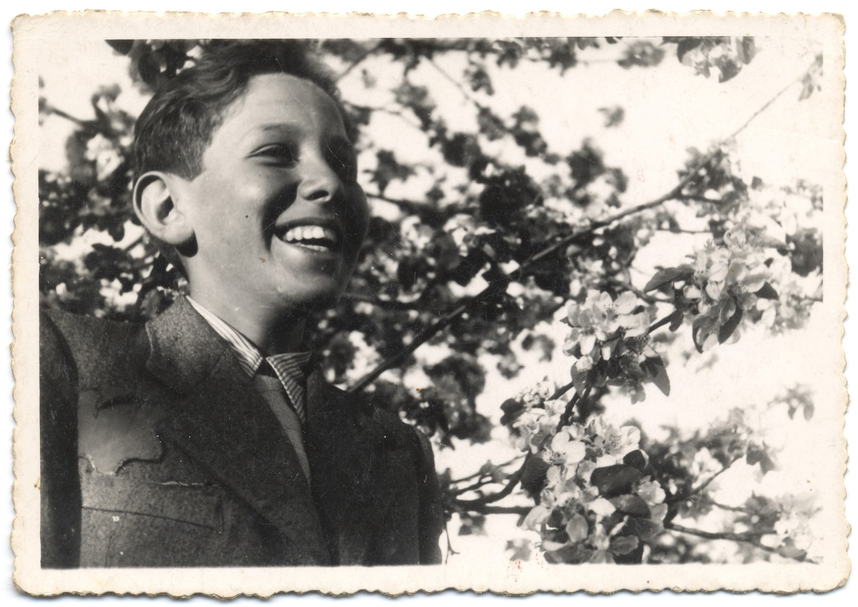 Portrait of a young Jewish teenager in the Lodz ghetto.  Pictured is Menek Fajtlowicz, the cousin of the donor.
