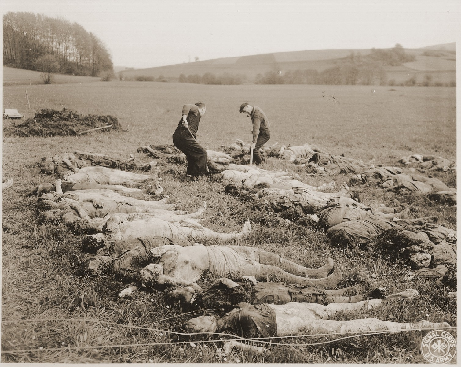 "Two German civilians lay out the corpses exhumed from a mass grave in the vincinity of Hirzenhain.  The original caption reads, ""Jewish women died from burtality and malnutrition lying in the field awaiting to be buried by the civilians at the Hergenhein concentration camp, Germany.  According to the Signal Corps caption, the photo was taken on May 6, 1945."