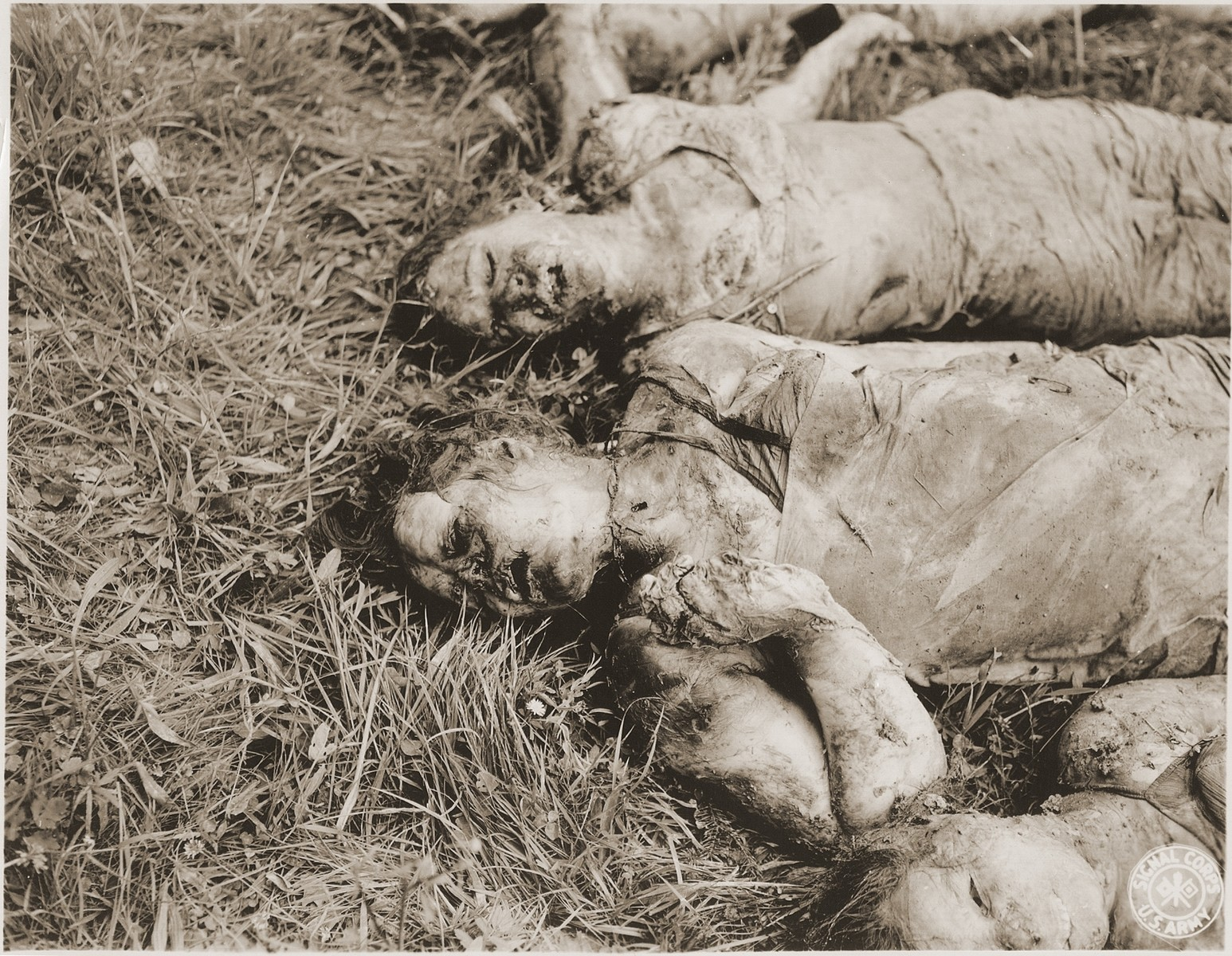 The corpses of female prisoners exhumed from a mass grave near Hirzenhain lie out in a field.