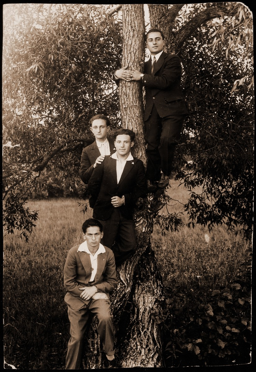 Four friends pose around the trunk of a tall tree in the Seklutski forest.   From bottom up: Dov Wilenski, Motke Burstein, Yehudah Kaleko, and Gutlobski.  Dov Wilenski and Yehudah Kaleko made immigrated to Palestine.  Motke Burstein was murdered by the Germans while serving in the Polish army.
