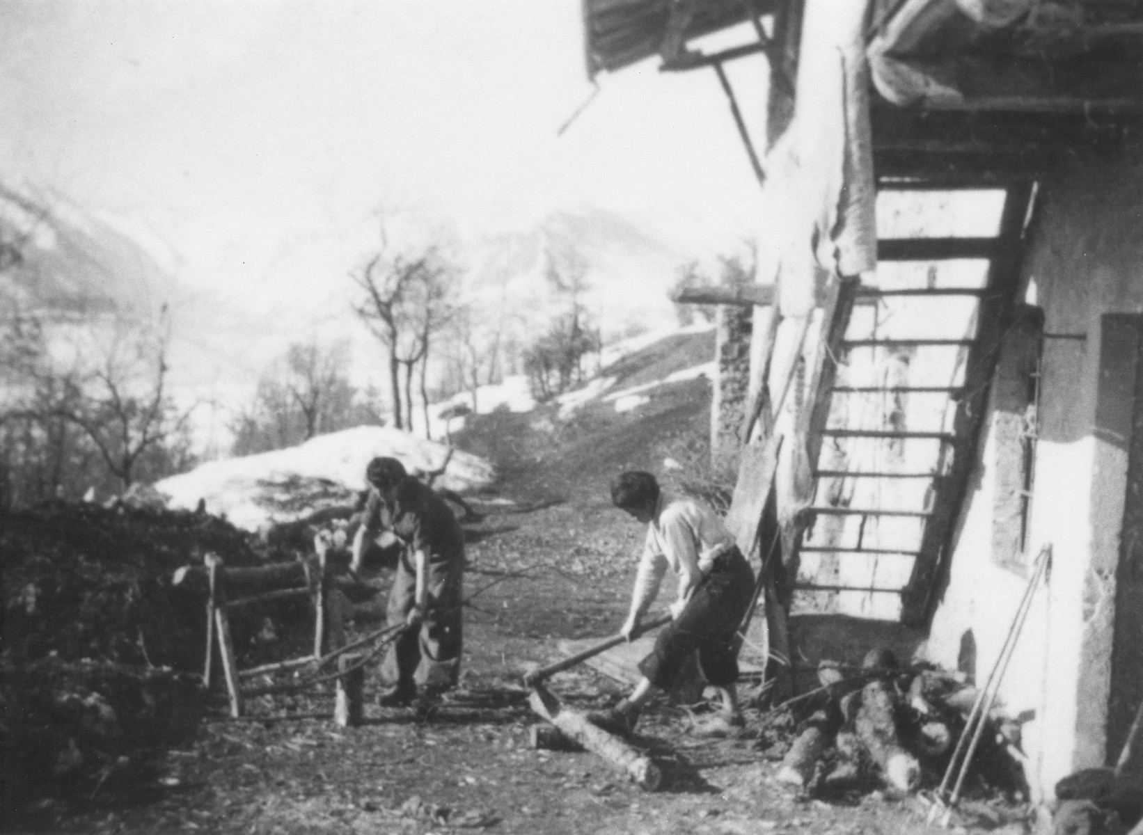 Jewish refugees work in a farm where they were hiding in Valle Stura, Italy after crossing over the border from France.