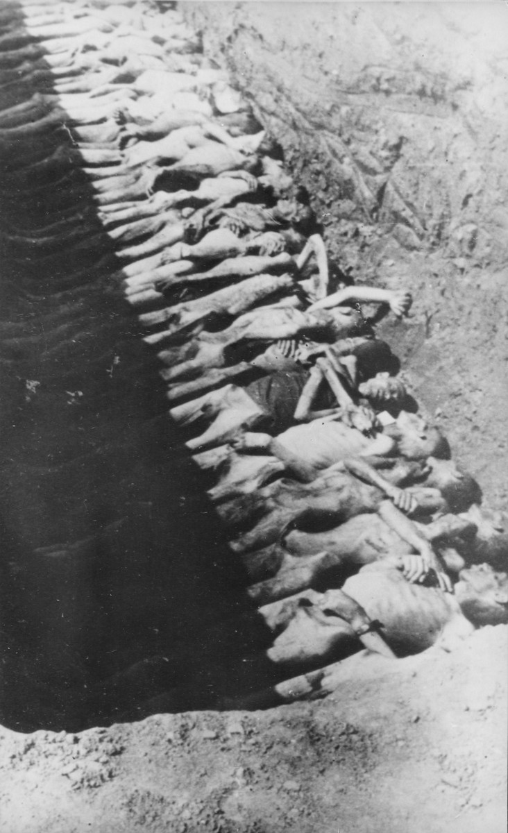"""Corpses in a mass grave in the so-called """"American cemetery"""" at Mauthausen."""