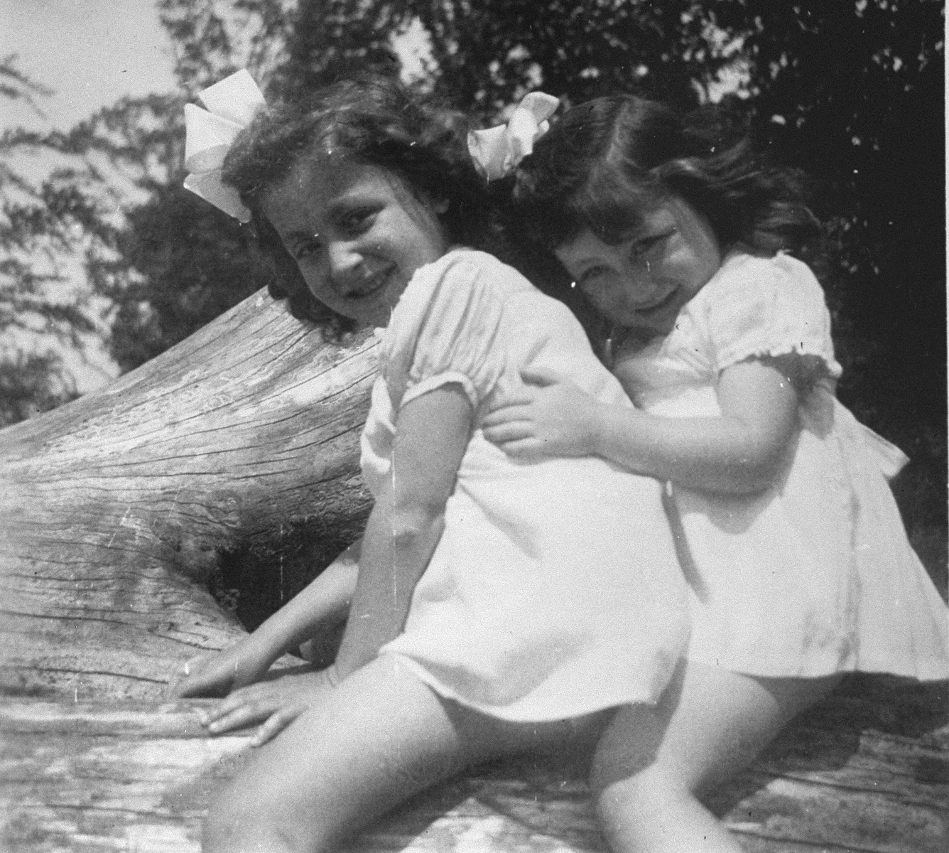 Annette and Margo Lederman, two Jewish children in hiding, pose in a tree on the farm of the van Buggenhout family.