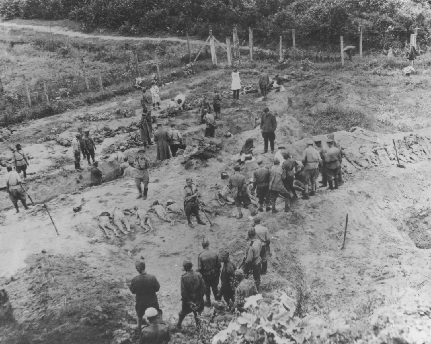 Soviet soldiers exhume a mass grave in Lvov.  Upon examination of the victims, it was determined that the mass shooting took place on July 18, 1944.  The investigating commission found identification cards for Rybey Vassiley, Ponashuk Vassiley, Okun Michail, Soroka Igor, Rybakovski Rudolf, Cyganik Bortlomey, Gavrilov Michail, and Sinneruchyj Alexander among others.