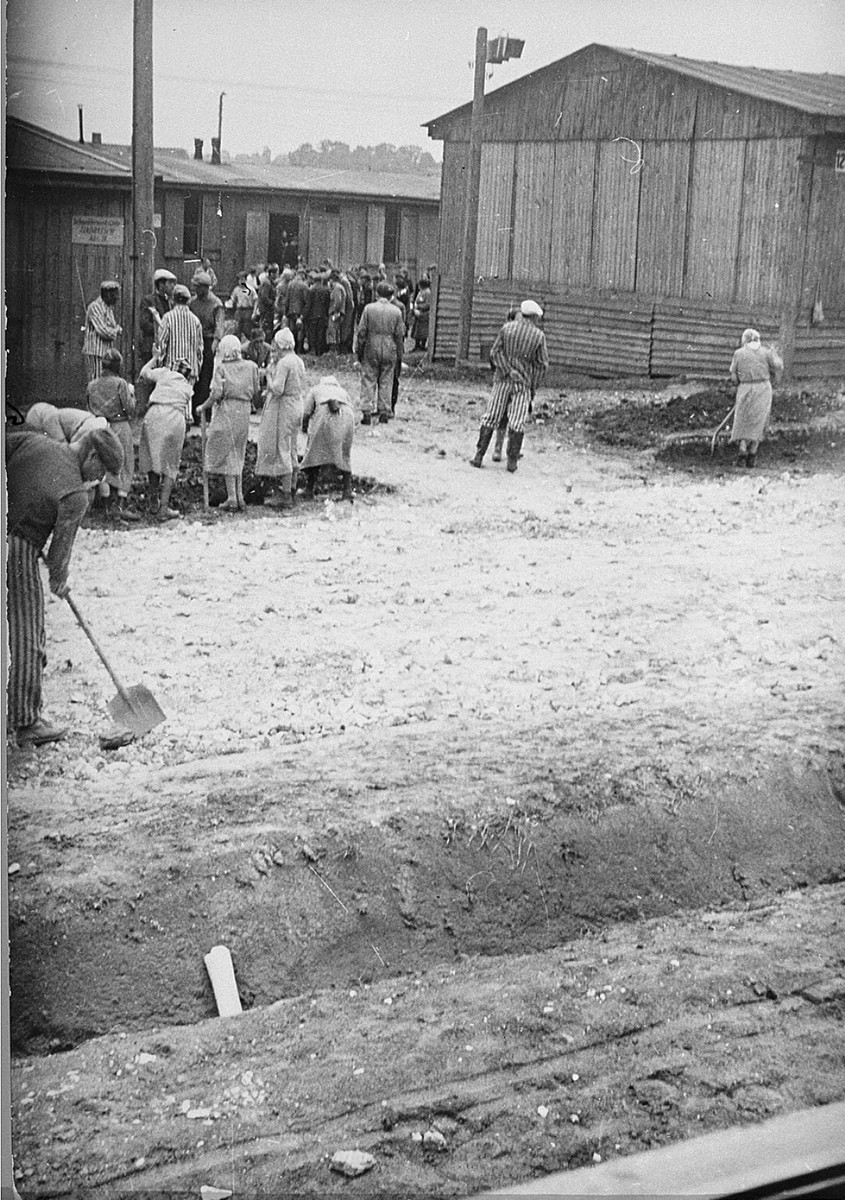 Jewish prisoners at forced labor in Plaszow.