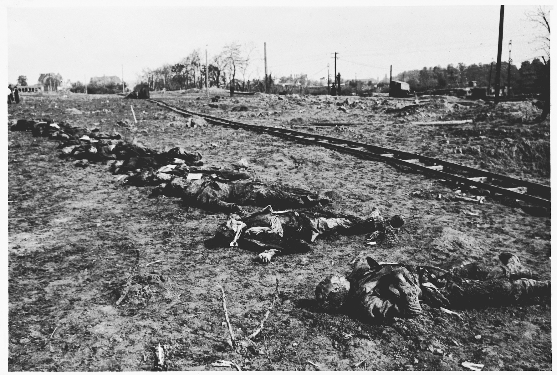 The bodies of Italians who shot by the Gestapo in Wilhelmshoehe on March 31, 1945 lie next to a railroad tracks after their exhumation from a mass grave.