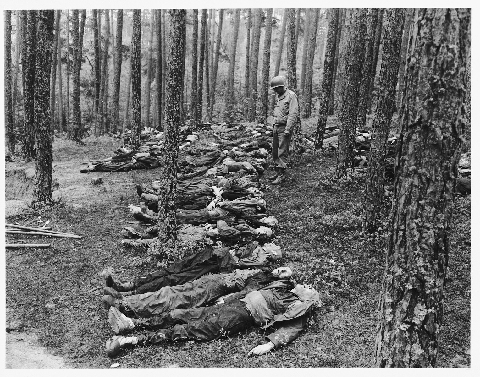 An American soldier looks at the corpses of Polish, Russian, and Hungarian Jews found in the woods near Neunburg vorm Wald.    The victims were prisoners from Flossenbuerg who were shot near Neunburg while on a death march.