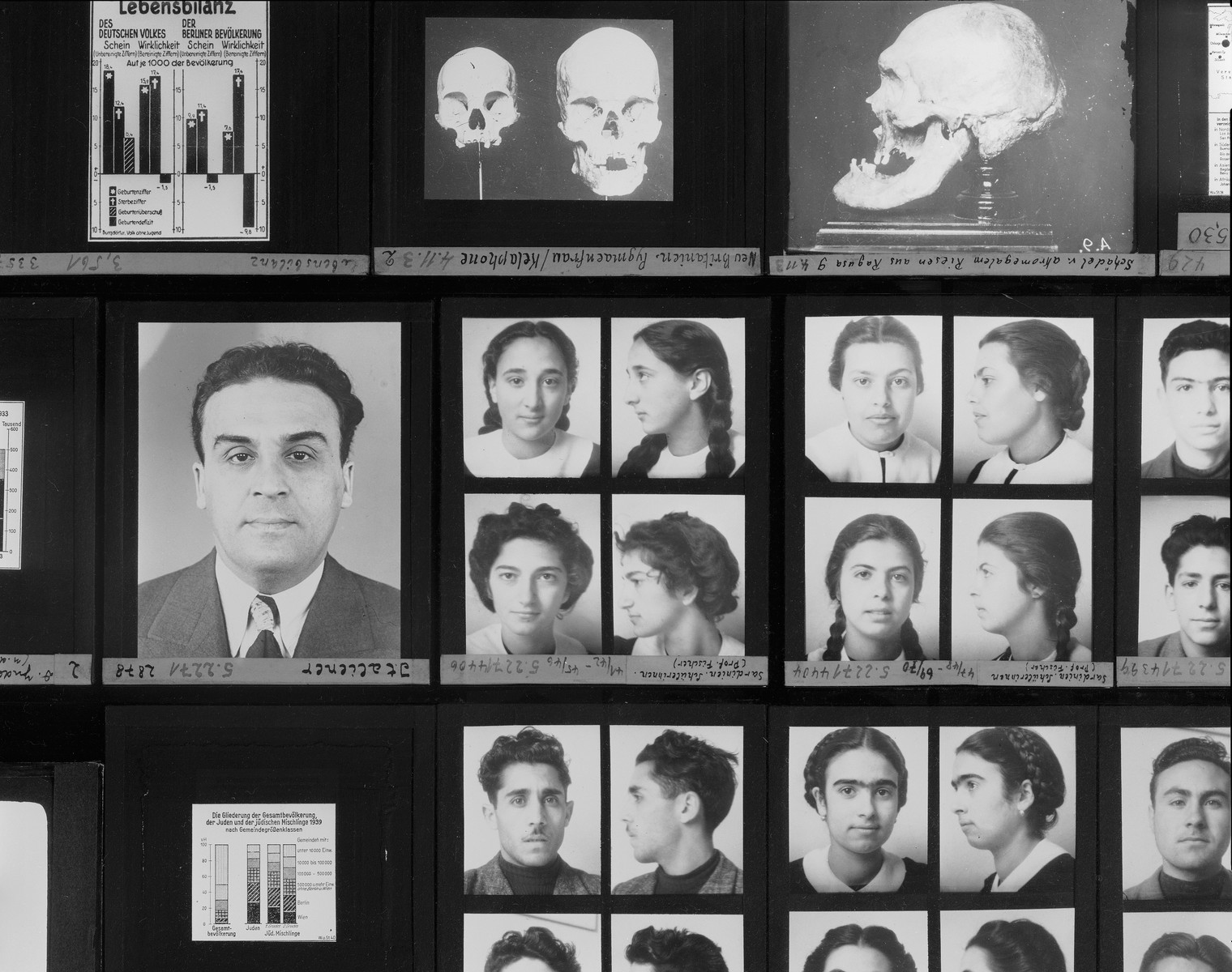 Detail of a display on Nazi racial science, featuring a series of glass lantern slides, on the fourth floor of the permanent exhibition at the U.S. Holocaust Memorial Museum.