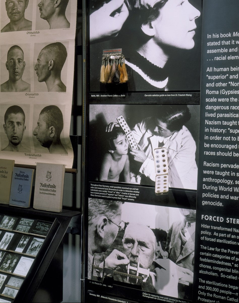 "Detail of the ""Science of Race"" segment on the fourth floor of the permanent exhibition at the U.S. Holocaust Memorial Museum."