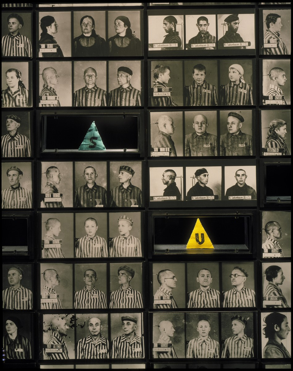 Photo mural displaying mug shots of prisoners interned in Auschwitz and a few of the badges they were made to wear to identify their nationality and prisoner category, that is on the third floor of the permanent exhibition at the U.S. Holocaust Memorial.