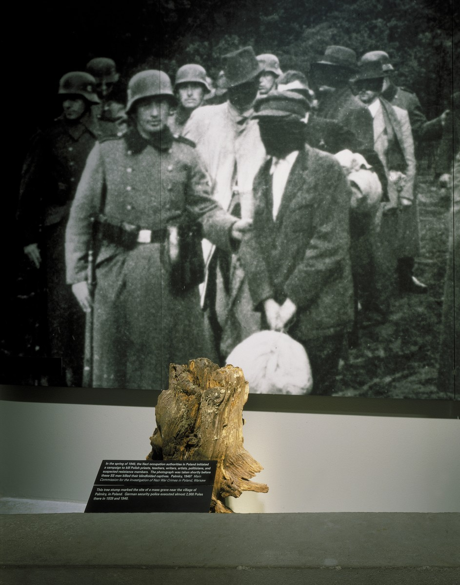 "Detail of the ""Terror in Poland"" segment, featuring a tree stump in front of a photo of a killing action in Palmiry, on the fourth floor of the permanent exhibition at the U.S. Holocaust Memorial Museum."
