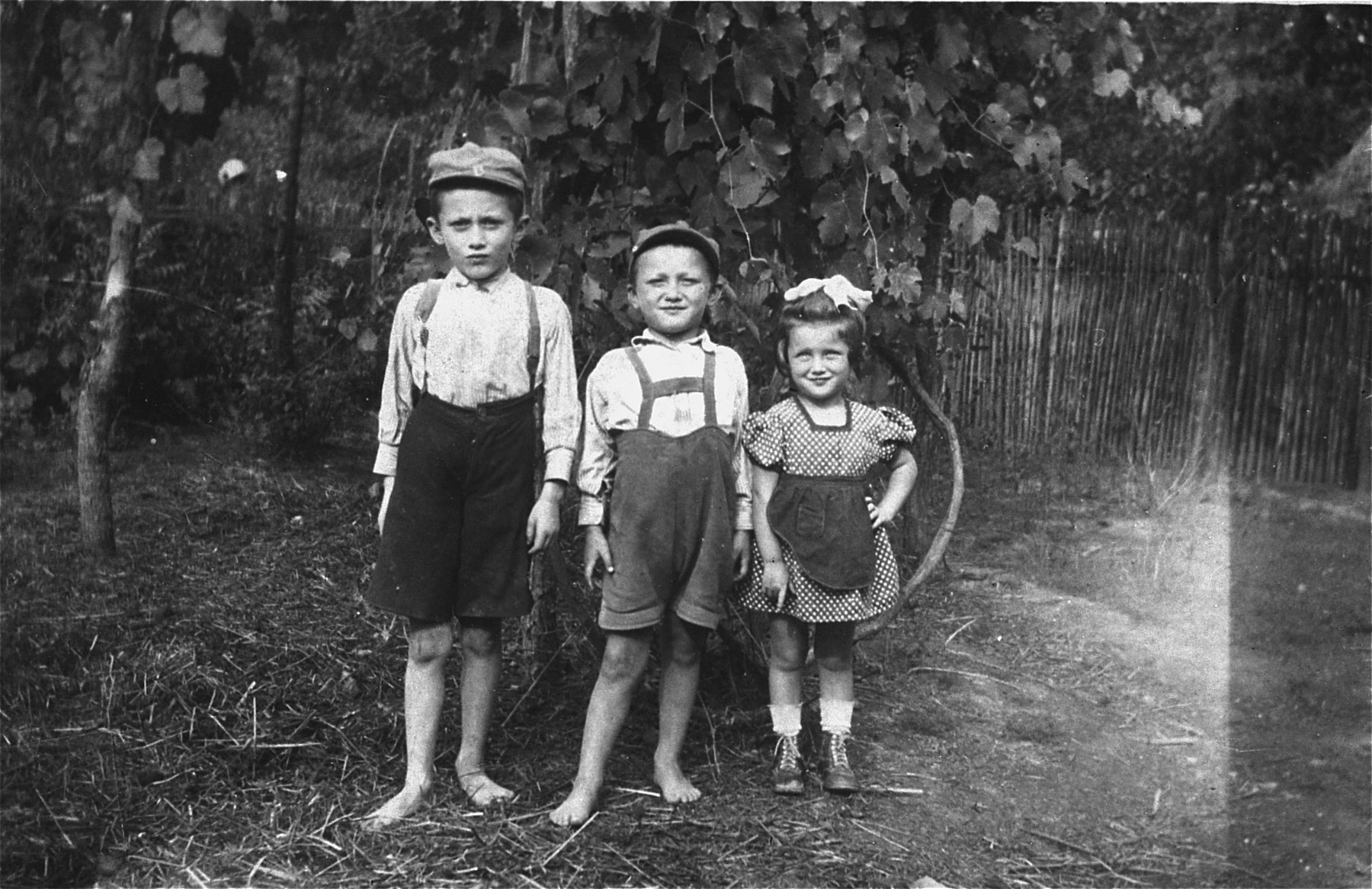 Three Jewish children pose outside in Veliki Palad.  Pictured are Shloimele, Moshe and Tova-Elka Fried, the children of Yehoshua and Jortse (Markovitz) Fried.  All three were deported and killed in Auschwitz.  The children are the cousins of donor, Edith Polon.