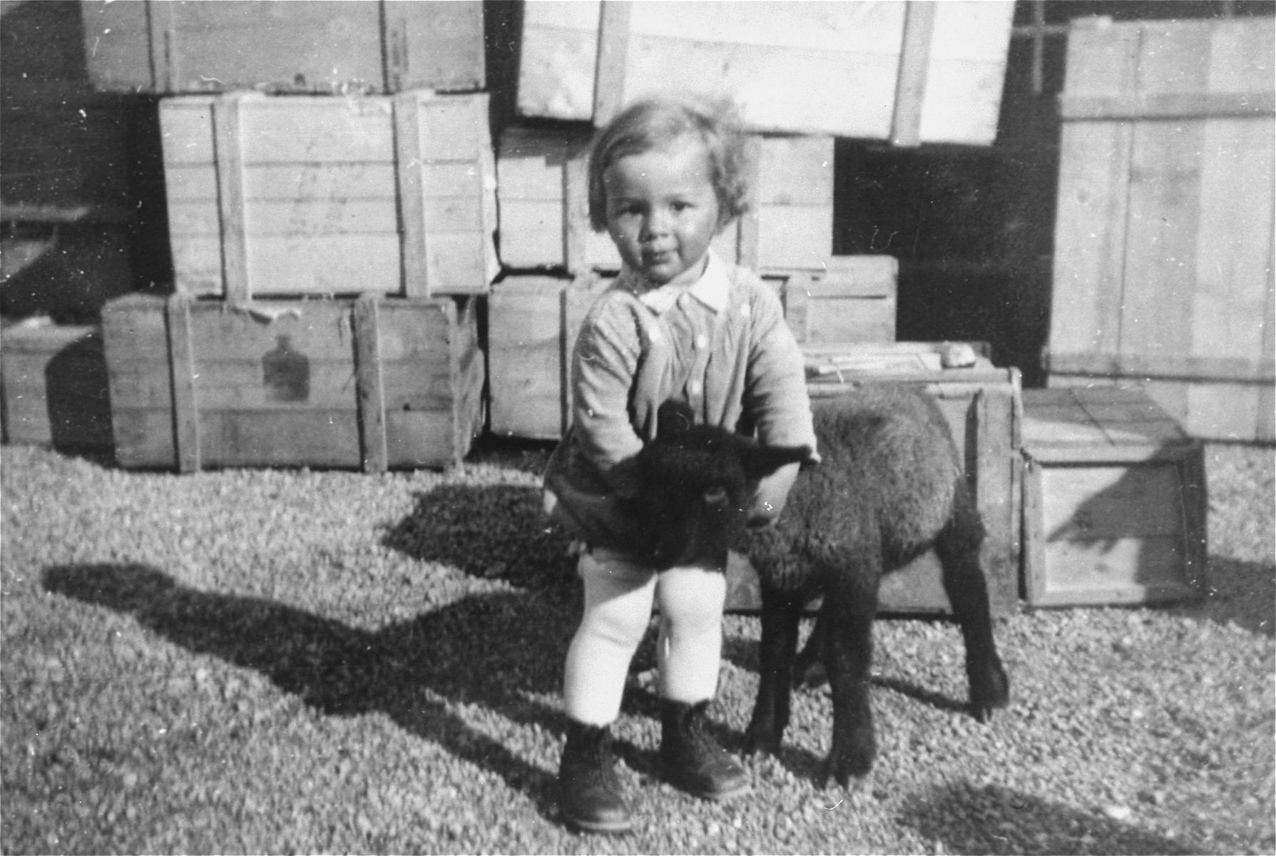 Portrait of the donor's son, Heinrich Muller with a black sheep in the courtyard behind their home and business in Hlohovec, Czechoslovakia.