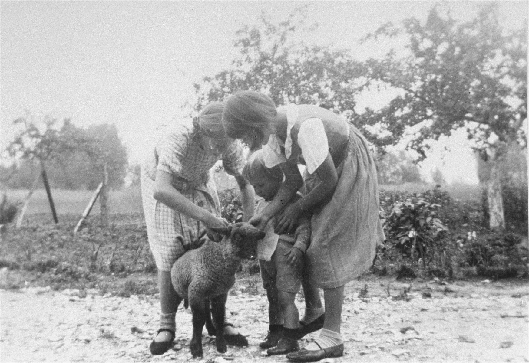 Magdalena, Paul-Gerhard, and Elisabeth attend to a lamb in the yard of the Kusserow family home in Bad Lippspringe.