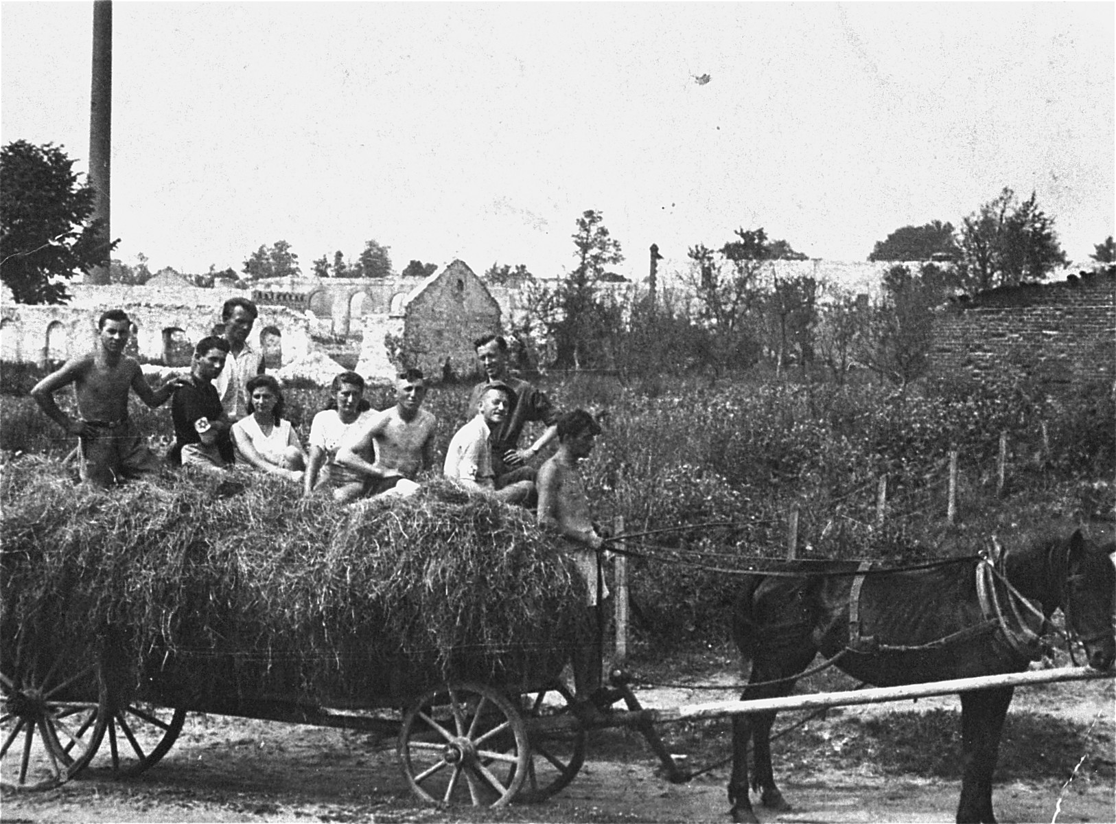 Members of the Hashomer Hatzair Zionist collective in Zarki ride on a hay wagon on their farm.    Pictured from left to right are Motek Weinrib, Berel (Berek) Lemel, Srulek Warszawski, Lodzia Hamersztajn, Chagit Elster, Zborowski, unidentified, Arie Wilner and Avram Zilbersztajn.  The photo was taken during the visit of Arie Wilner.