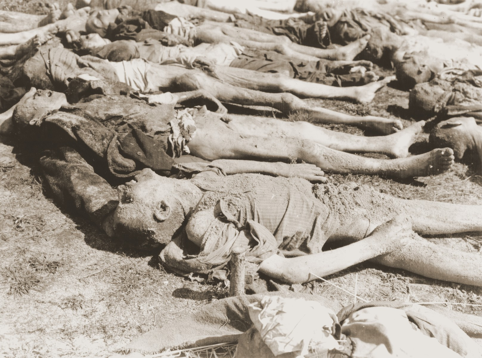 "The bodies of 140 Hungarian, Russian, and Polish Jews exhumed from a mass grave near the town of Schwarzenfeld are laid out on the ground.    The victims died while on an evacuation transport from the Flossenbuerg concentration camp.  The original Signal Corps caption reads, ""THIRD U.S. ARMY DISCOVERS NAZI ATROCITY.  When troops of the 26th Infantry Division, Third U.S. Army, captured Schwarzenfeld, Germany, April 22, 1945, another story of Nazi murder and atrocity was revealed.  The Americans discovered that many hundreds of helpless persons, including Allied prisoners-of-war and Polish Jewish slave laborers, had been shot in cold blood by Nazi SS troops, and their bodies thrown into a mass grave.  The executions took place on the day before the American forces captured the town.  After making official record of the circumstances, U.S. Military Government officers ordered local German civilians to exhume the bodies and provide coffins and a civilized burial for the victims.  Schwarzenfeld is 47 miles east of Nuremburg and 28 miles west of the Czechoslovakian border.  BIPPA                                                        EA 64392  THIS PHOTO SHOWS:  This closeup of a group of the victims shows that some of the bodies are mere skin and bones, the result of prolonged under-nourishment at  the hands of the Nazis.  U.S. Signal Corps Photo ETO-HQ-45-34028. SERVICED BY LONDON OWI TO LIST B CERTIFIED AS PASSED BY SHAEF CENSOR"