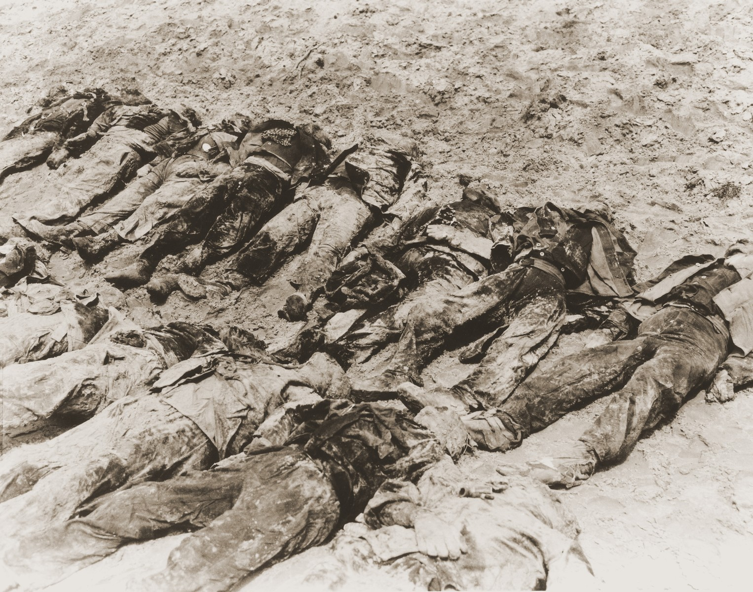 The bodies of political prisoners exhumed from a mass grave on Wenzelnberg near Solingen-Ohligs.    The victims, most of whom were taken from Luettringhausen prison, were shot and buried by the Gestapo following orders to eliminate all Reich enemies just before the end of the war.
