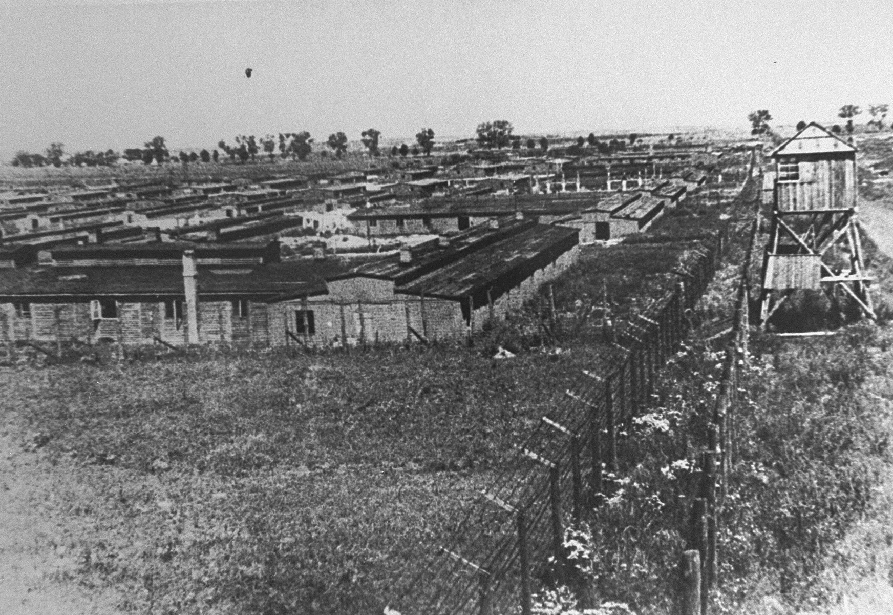 A view of the Majdanek concentration camp after liberation.