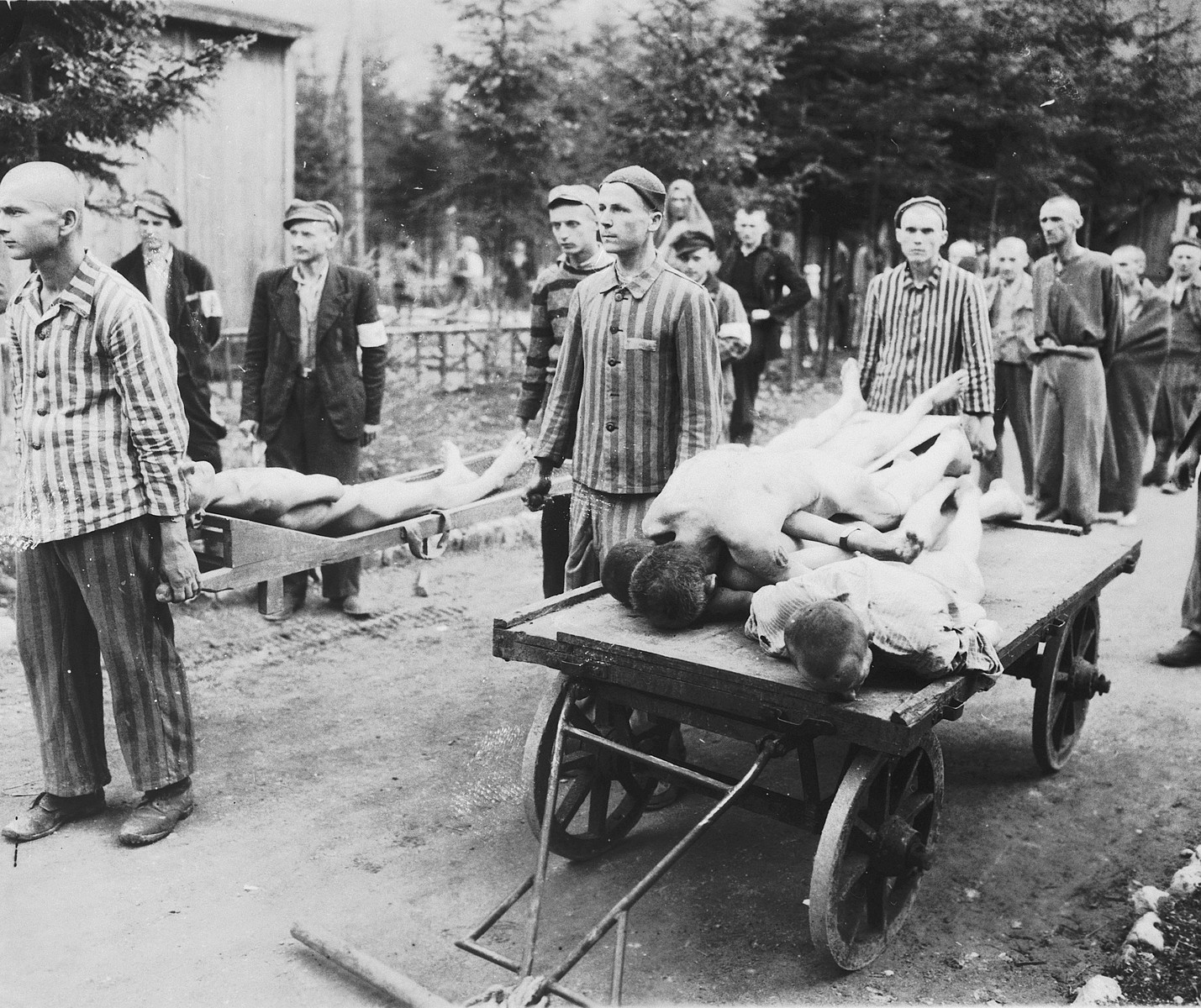 Survivors wearing their camp uniforms remove the dead on carts and stretchers at the newly liberated Ebensee concentration camp.  Among those pictured is Henek Brodt. He is standing sixth from the left, partially obscured, wearing a prisoners uniform, cap and armband.