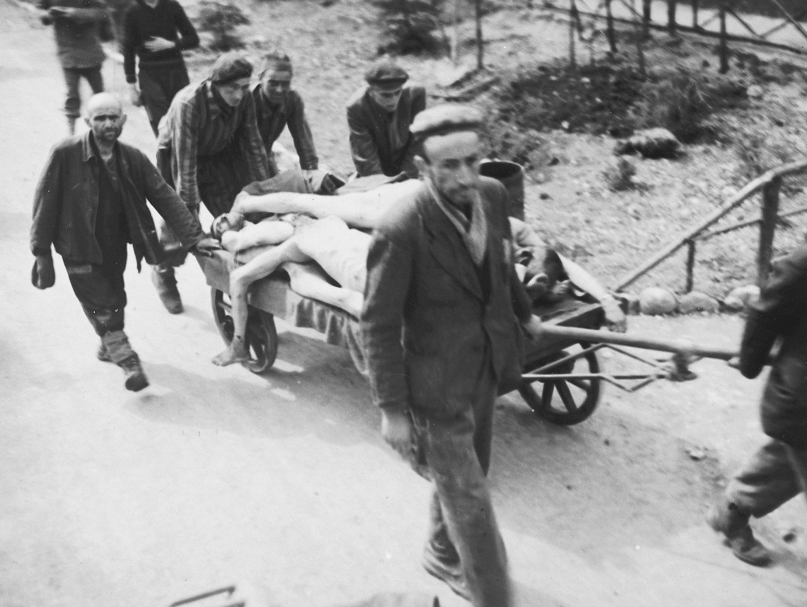 Survivors pull a cart loaded with dead bodies along a road in the newly liberated Ebensee concentration camp.