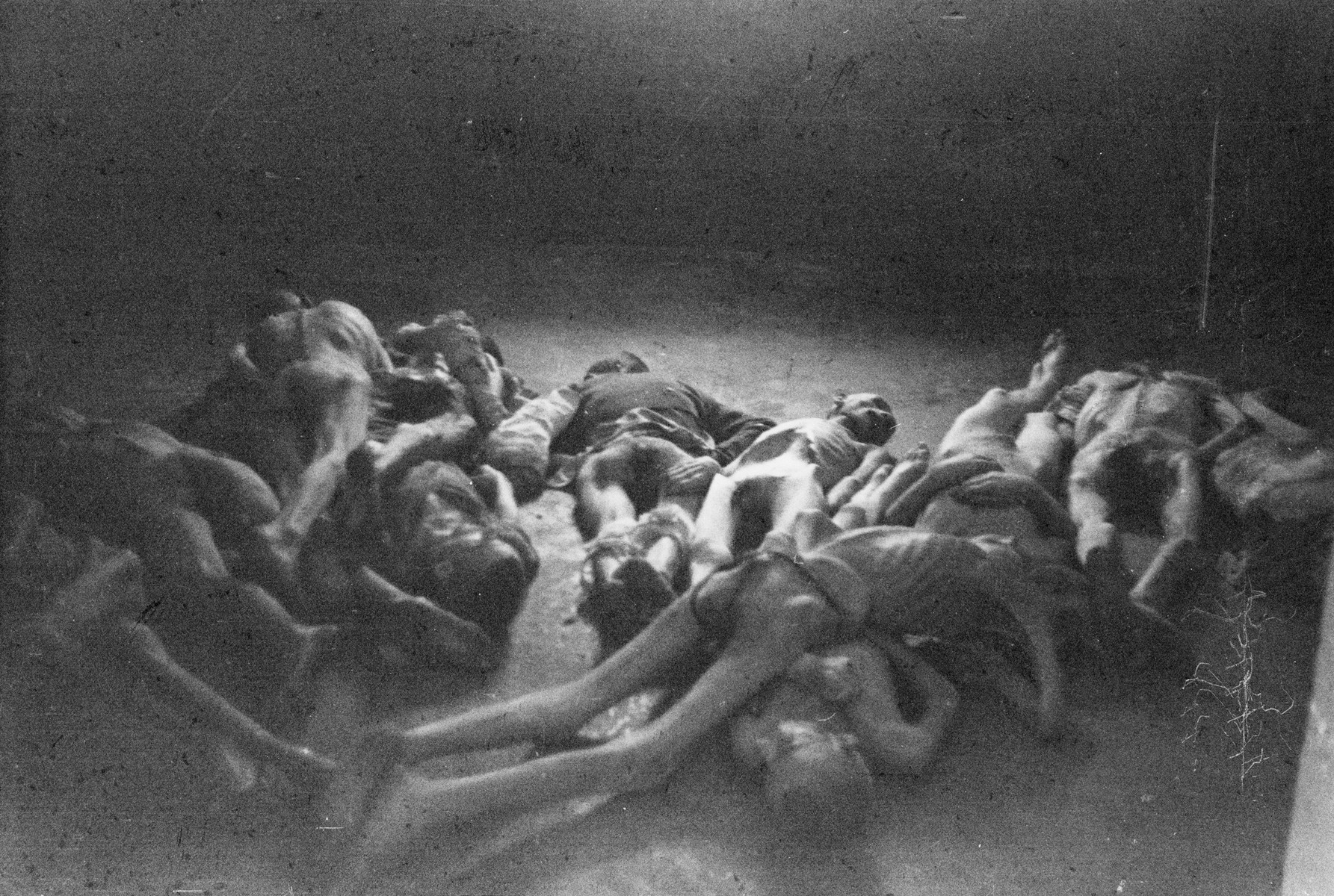 The emaciated bodies of concentration camp prisoners lie on the floor of a building in the newly liberated Nordhausen camp.