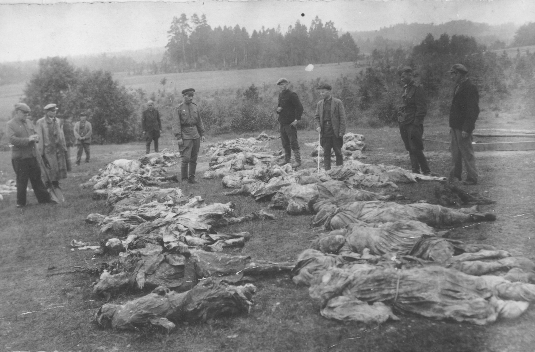 Lithuanians and a Soviet officer stand among the remains of twenty Jewish atrocity victims, who were exhumed from a mass grave in the woods near Utena.