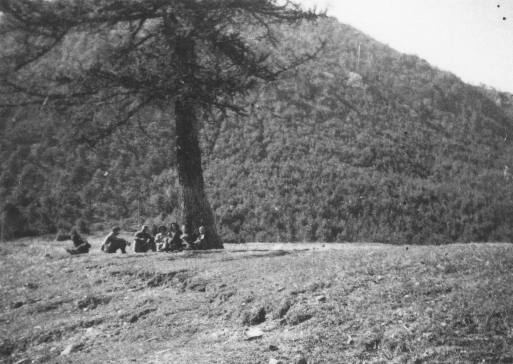 Jewish refugees rest under a tree during their escape over the Alps to Italy from the Italian-occupied zone in France following the signing of the Italian armistice.