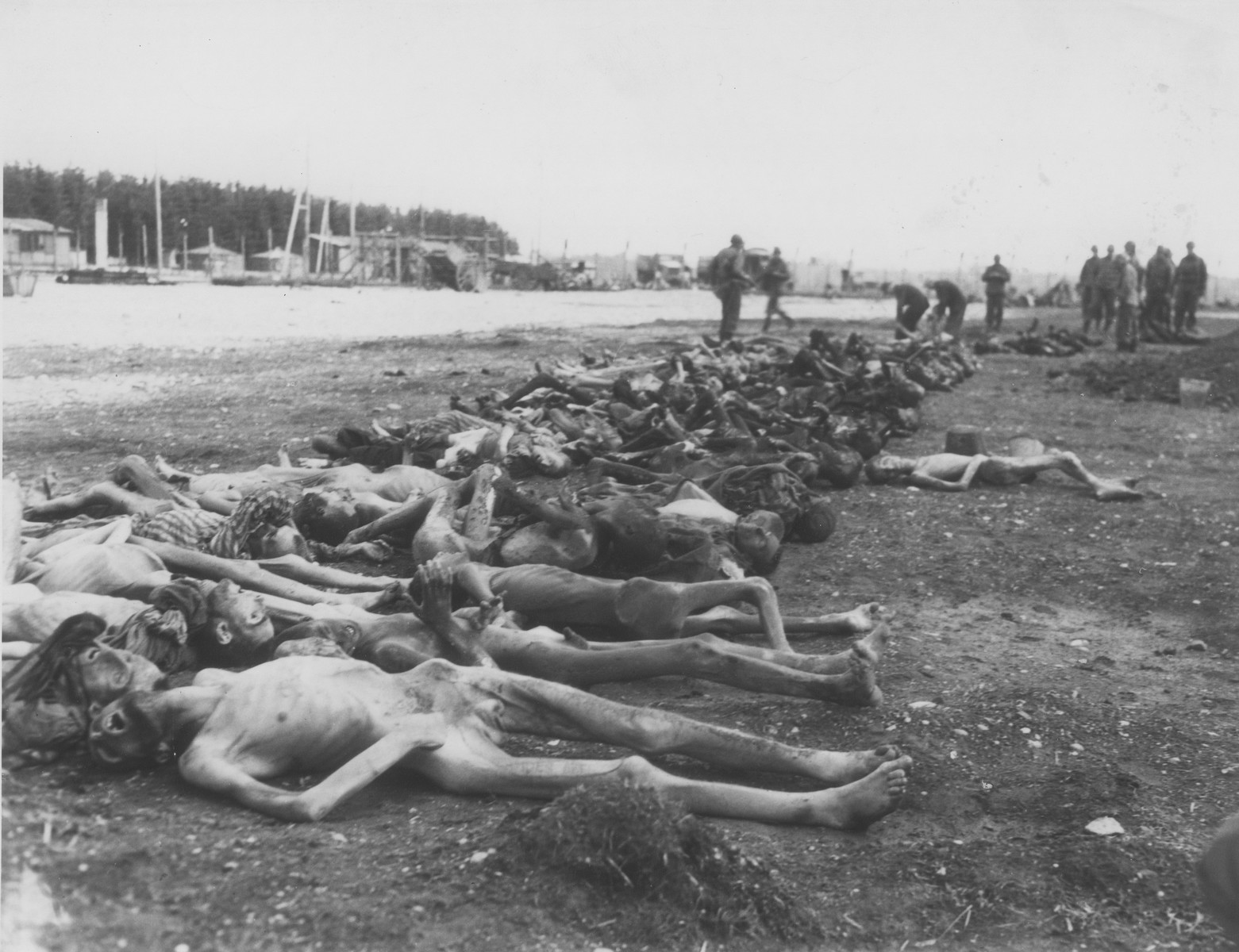 American troops examine a row of bodies laid out in a row in Hurlach concentration camp.