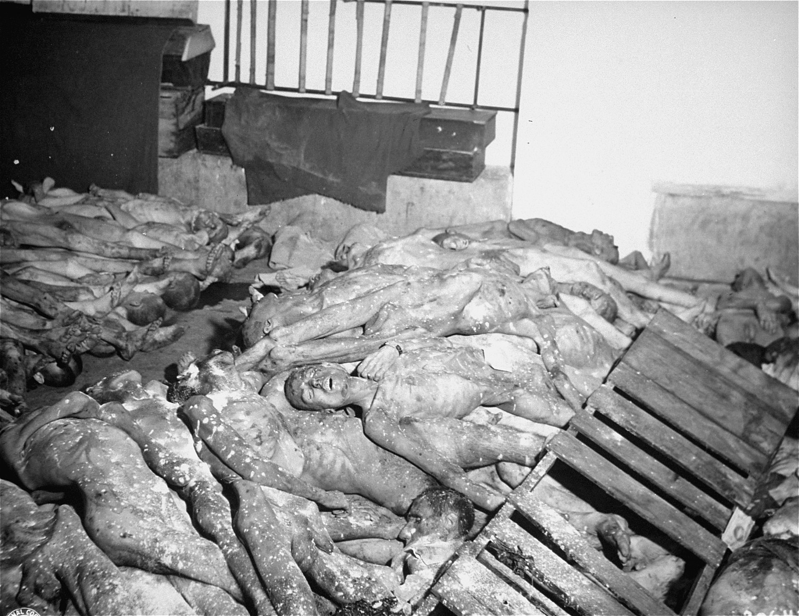 The bodies of prisoners killed in Gusen assembled for cremation.