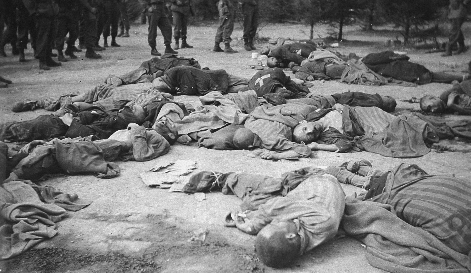 American soldiers view the bodies of prisoners shot by the SS during the evacuation of the Ohrdruf concentration camp.
